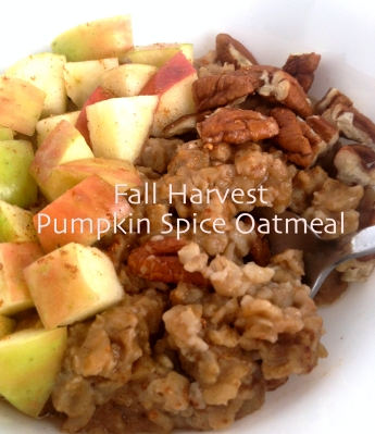 Pumpkinspice_Oatmeal_Somethingsweet